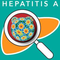 hep a contagious vaccine testing